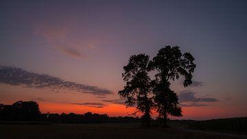 Sonnenuntergang Deldeneresch von Laurents ten Voorde