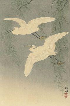Kleine zilverreigers in vlucht van Ohara Koson