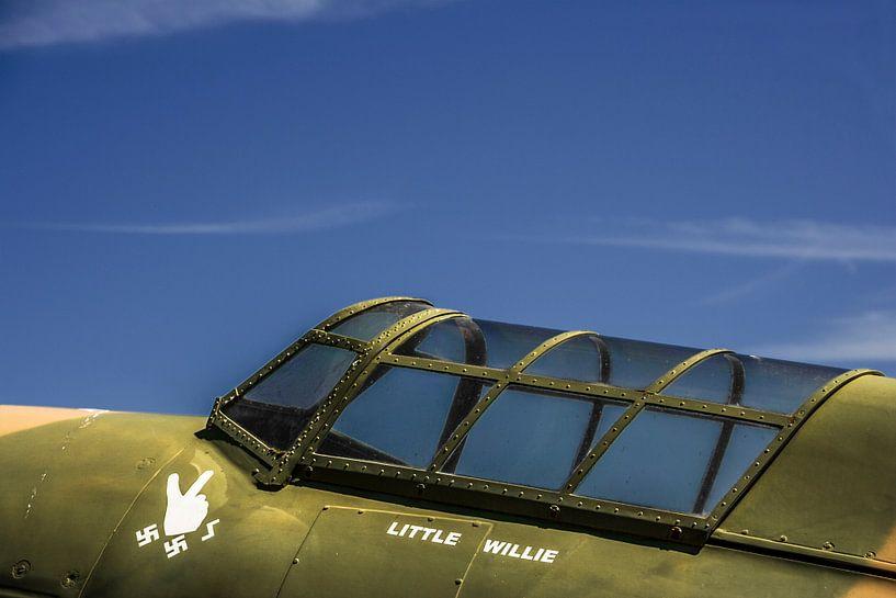 Spitfire  van Leo Hoogendijk