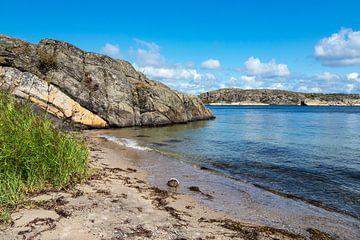 Strand auf der Insel Dyrön in Schweden von Rico Ködder