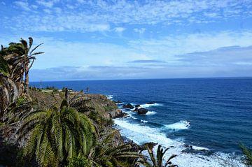 Fascinerend panorama van de Atlantische Oceaan bij Los Realejos op Tenerife van kanarischer Inselkrebs Heinz Steiner