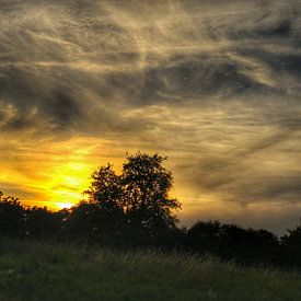 Sonnenuntergang von Andrea Meister