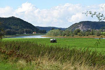 Elbe von Marcel Ethner