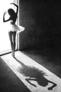 Schaduw dans, Sebastian Kisworo