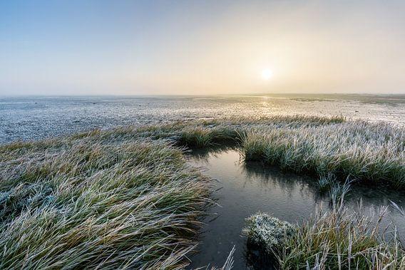 Het bevroren Wad, Paesens-Moddergat. van Ton Drijfhamer