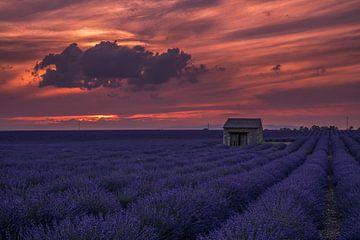 Les couleurs du coucher de soleil sur Joris Pannemans - Loris Photography
