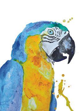 Blauer Ara - Kunstdruck einer speziellen tropischen Vogelillustration von Angela Peters