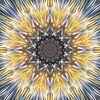 Mandala-stijl 16 van Marion Tenbergen thumbnail