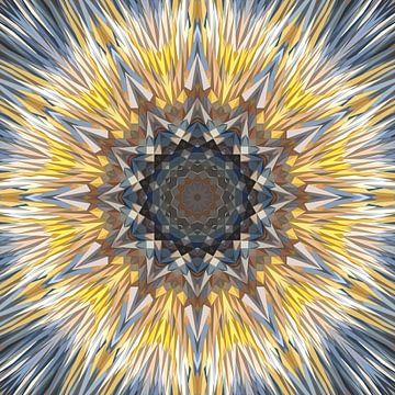 Mandala Art 16 von Marion Tenbergen