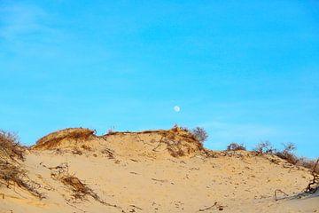 Blue moon... van Micky Bish