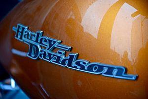 Amerikaans motoricoon Harley Davidson van Jan Radstake