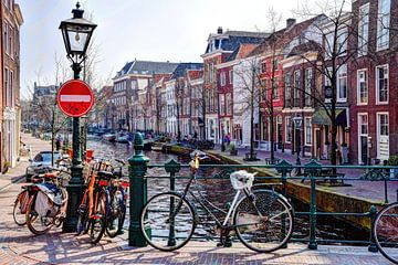 St. Jansbrug Oude Rijn Leiden Nederland van Hendrik-Jan Kornelis