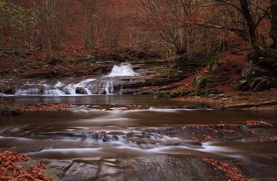 Herfst in Val Grande van Sander van der Werf
