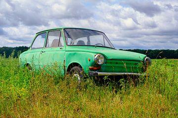 Voiture particulière Daf verte dans une prairie d'été sur Evert Jan Luchies