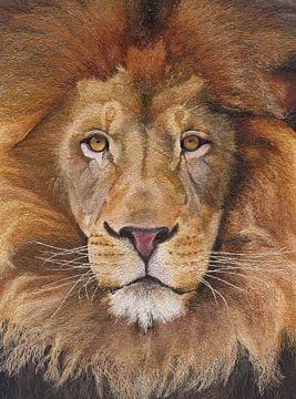 Löwe II von Russell Hinckley