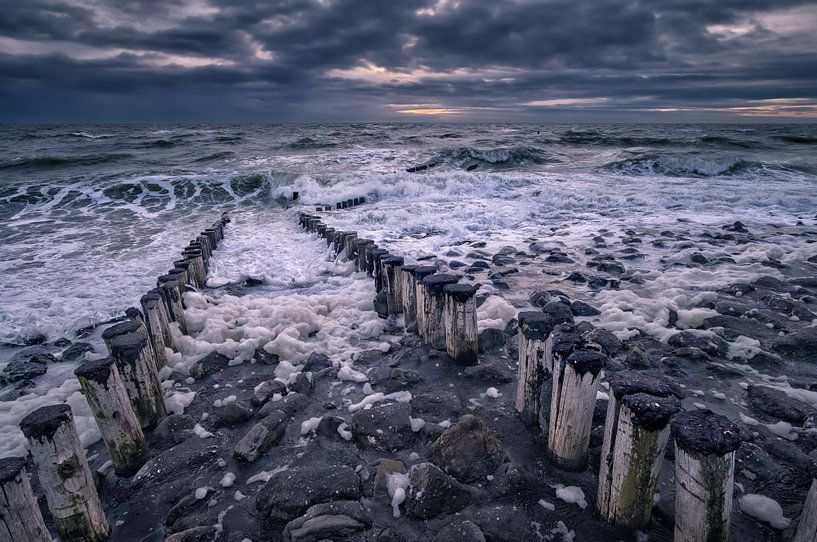 Wanneer golven woeden van Sander Poppe