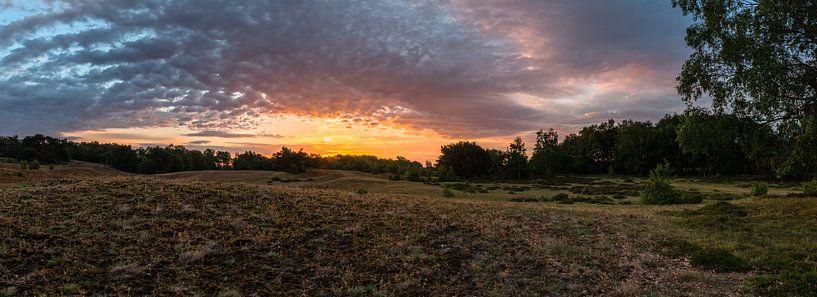 Sunrise Burst van William Mevissen