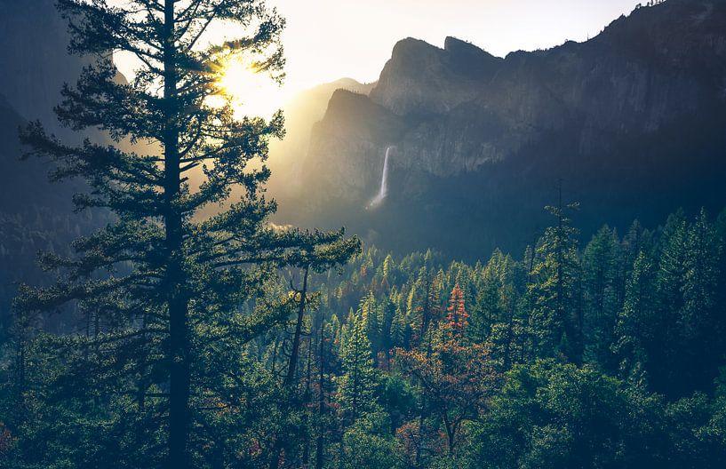 Lumière du matin sur Joris Pannemans - Loris Photography
