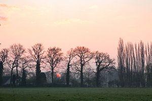 zonsopkomst bij Oud Amelisweerd van