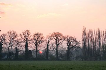 zonsopkomst bij Oud Amelisweerd