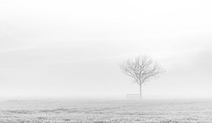 Eenzame boom van Ellen van den Doel