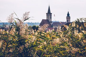 Rust am Neusiedlersee (Burgenland, Autriche)