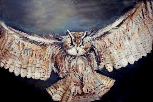 flying owl..... vliegende oehoe( uil) van
