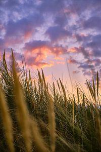 Zonsondergang in de Noordzeeduinen van Florian Kunde