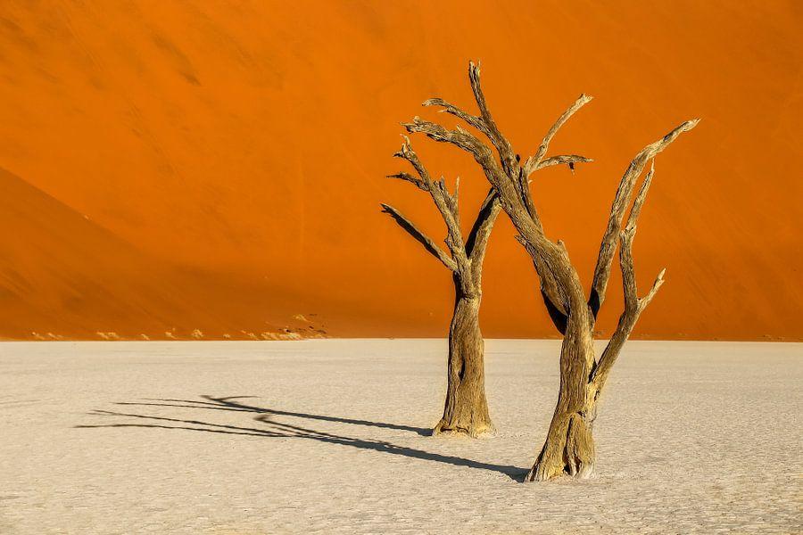 Schitterend landschap van de Deadvlei in de Namib Woestijn in Namibië. van Original Mostert Photography