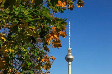 Televisietoren Berlijn met herfstboom van Frank Herrmann
