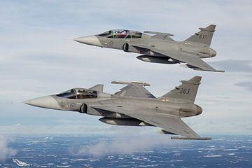 Zweedse Luchtmacht JAS-39 Gripen von Dirk Jan de Ridder