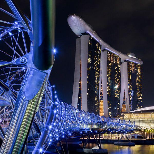 Singapore blues van Jasja de Wit