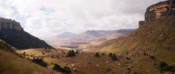Het Amphitheater - de Noordelijke Drakensbergen  van Lotje Hondius