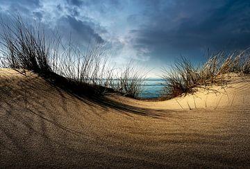 Dunes........ von Wim Schuurmans