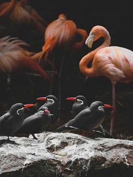Flamingo-Kunst von Fotojeanique .