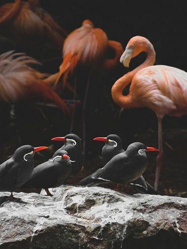 Flamingo Kunst