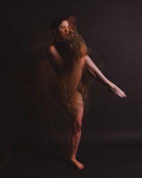 Ballerina in Bewegung 05 von FotoDennis.com