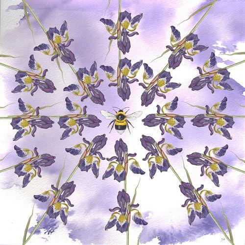 Blauwe irissen met tuinhommel