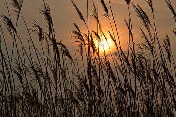 Zonsondergang von Marina de Jonge