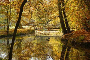 Vijver in de herfst van Michel van Kooten