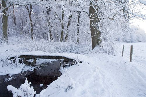 Sneeuw in Gelderland bij Renkum van Rijk van de Kaa
