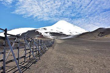 Onbesneeuwde berghelling met uitzicht op besneeuwde top van Bianca Fortuin