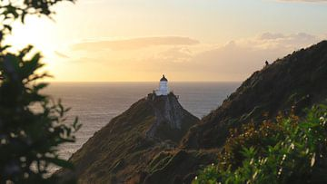 Golden hour at Nugget Point Lighthouse - New Zealand van Be More Outdoor