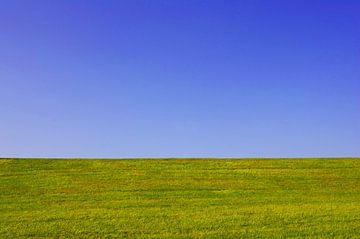 Prairie et ciel