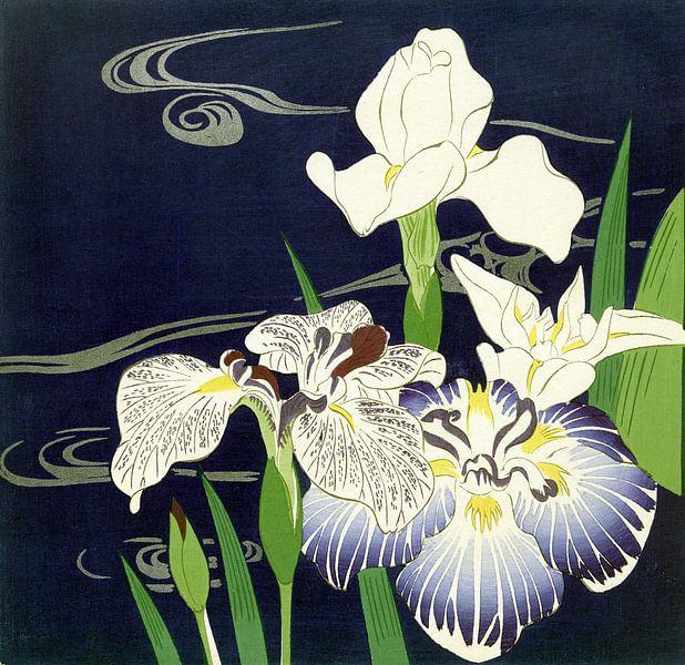 Irises, Tsukioka Kôgyo van 1000 Schilderijen