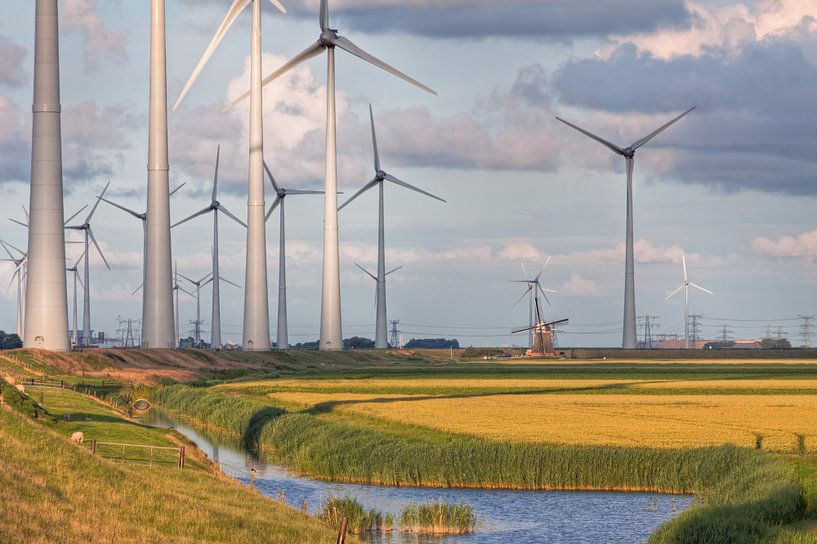 Poldermolen Goliath vs. Windturbines van Frenk Volt