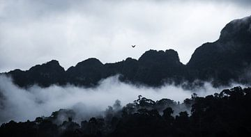 Bergen in Thailand von Bart van Woudenberg