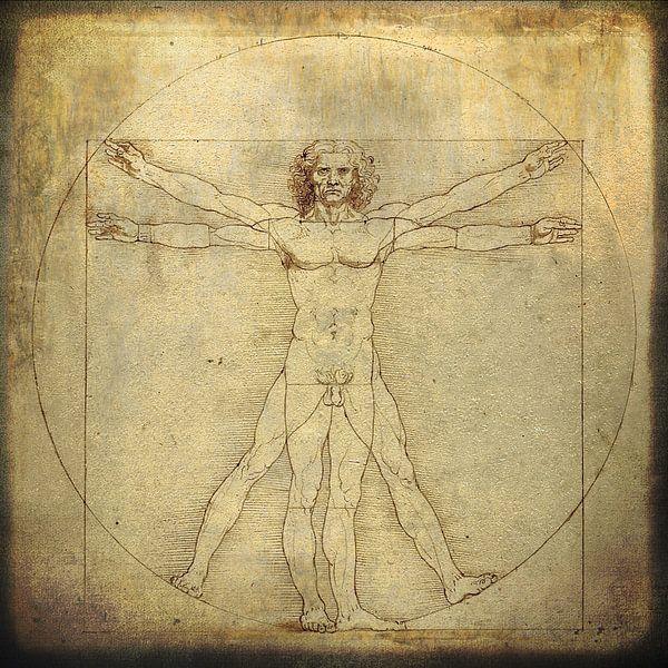 Learn how to see - Leonardo da Vinci van Studio Papilio