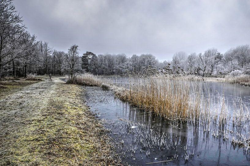 Winter bij de Tenellaplas van Frans Blok