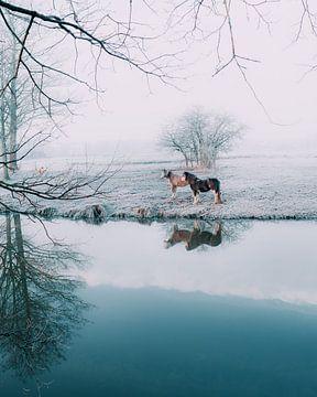 Pastel magie rivier Regge van Vladimir Fotografie